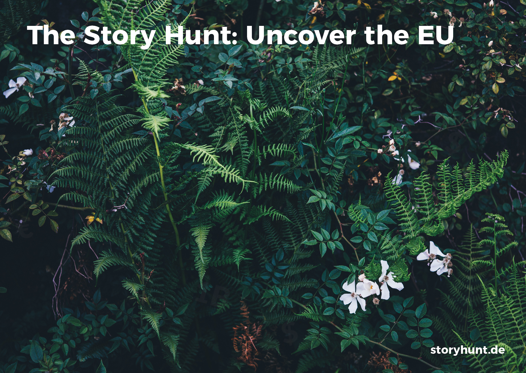 Join The Story Hunt - Uncover the EU!